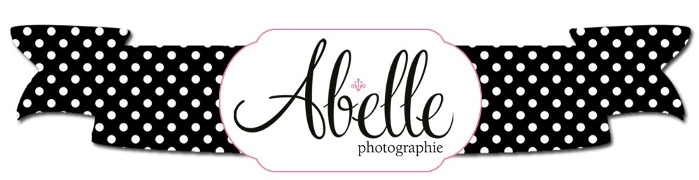 Abelle Photographie: Beauty Portraits & Wedding Photographer, Ottawa, Montreal, Brockville