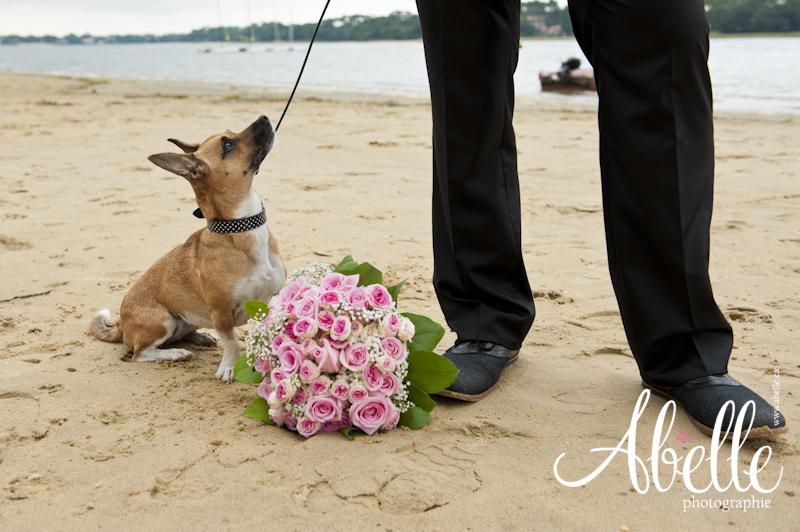 Le chien et le futur marié.