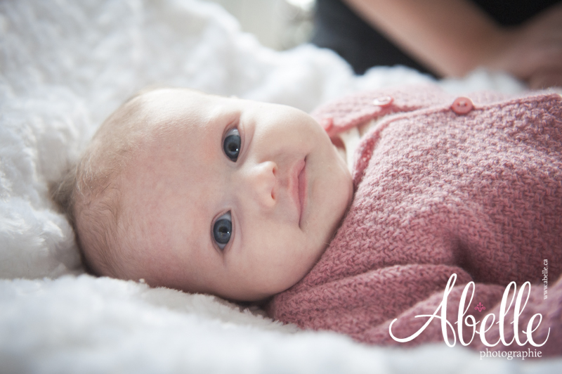 Professional Baby Portrait in Montreal by Abelle Photographie