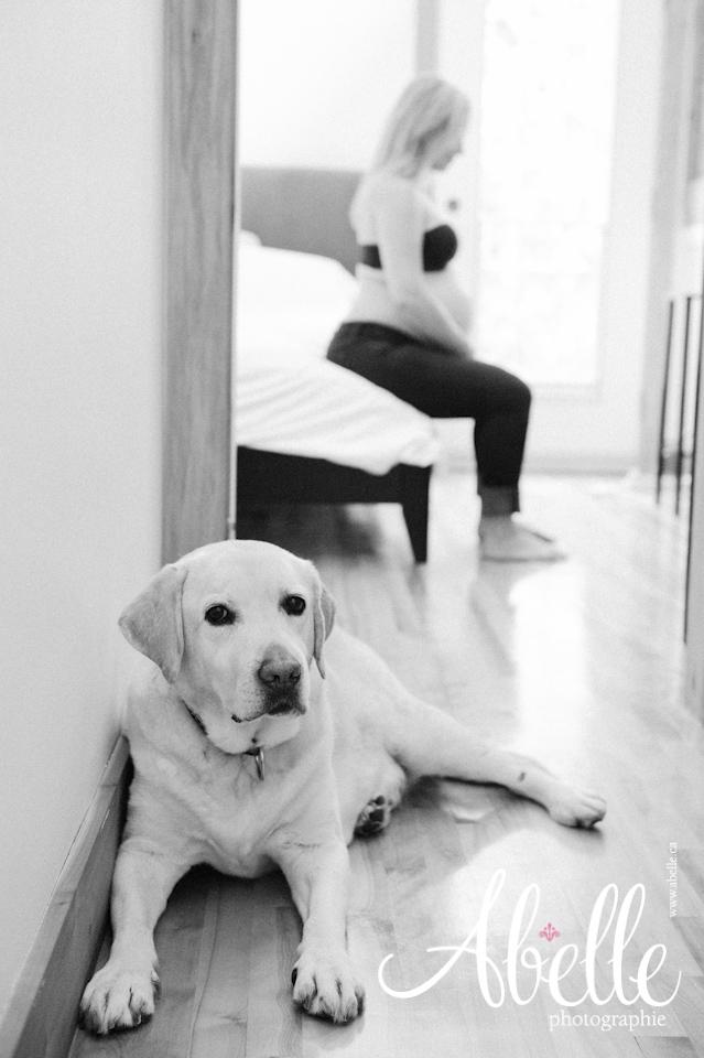 Portrait de maternité artistique: Abelle photographie