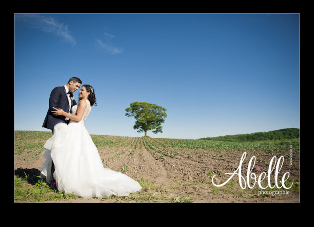 Portrait of a Wedding couple in the country.